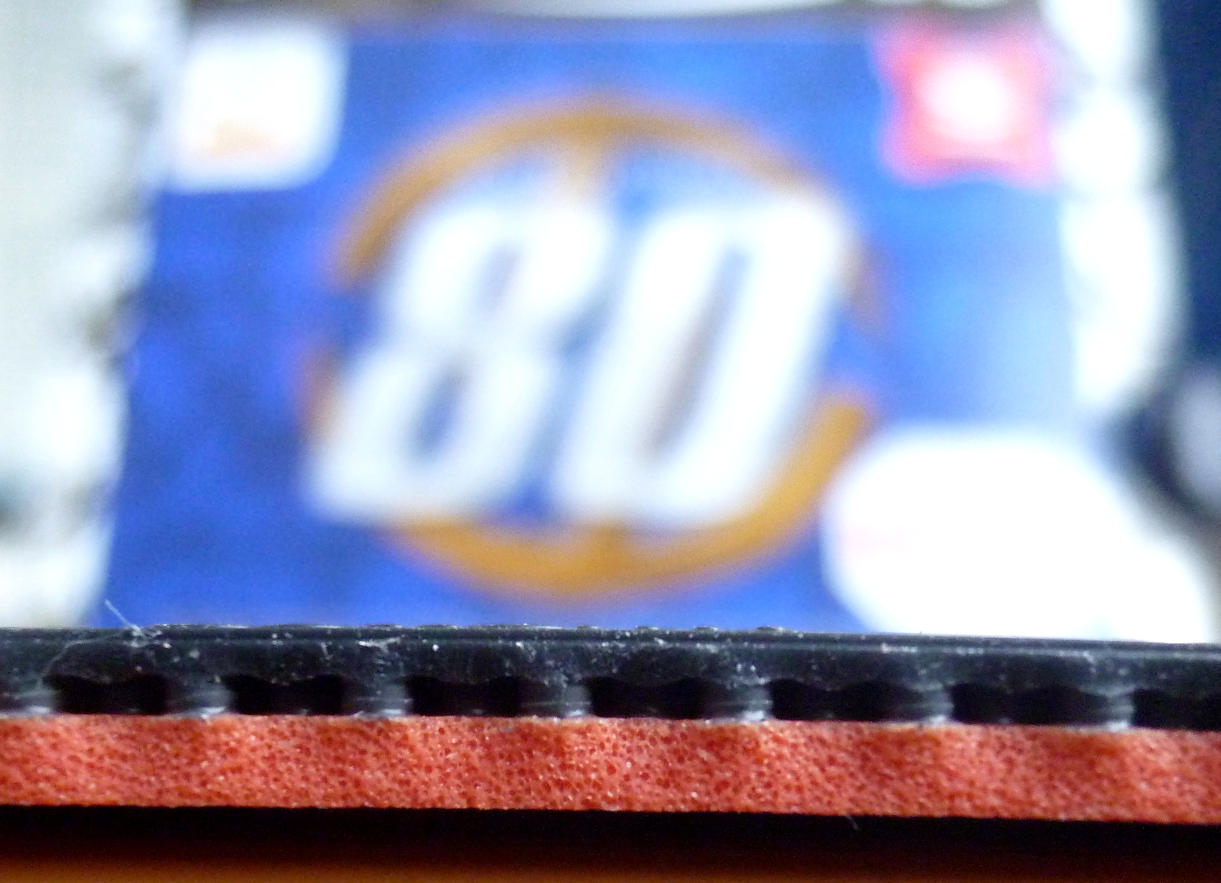 P1020508.JPG