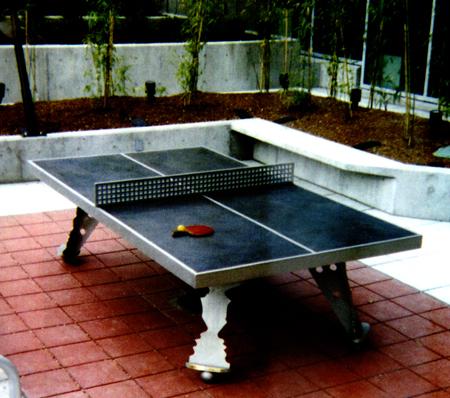 Теннисный стол для улицы. фото: M.SCOTT